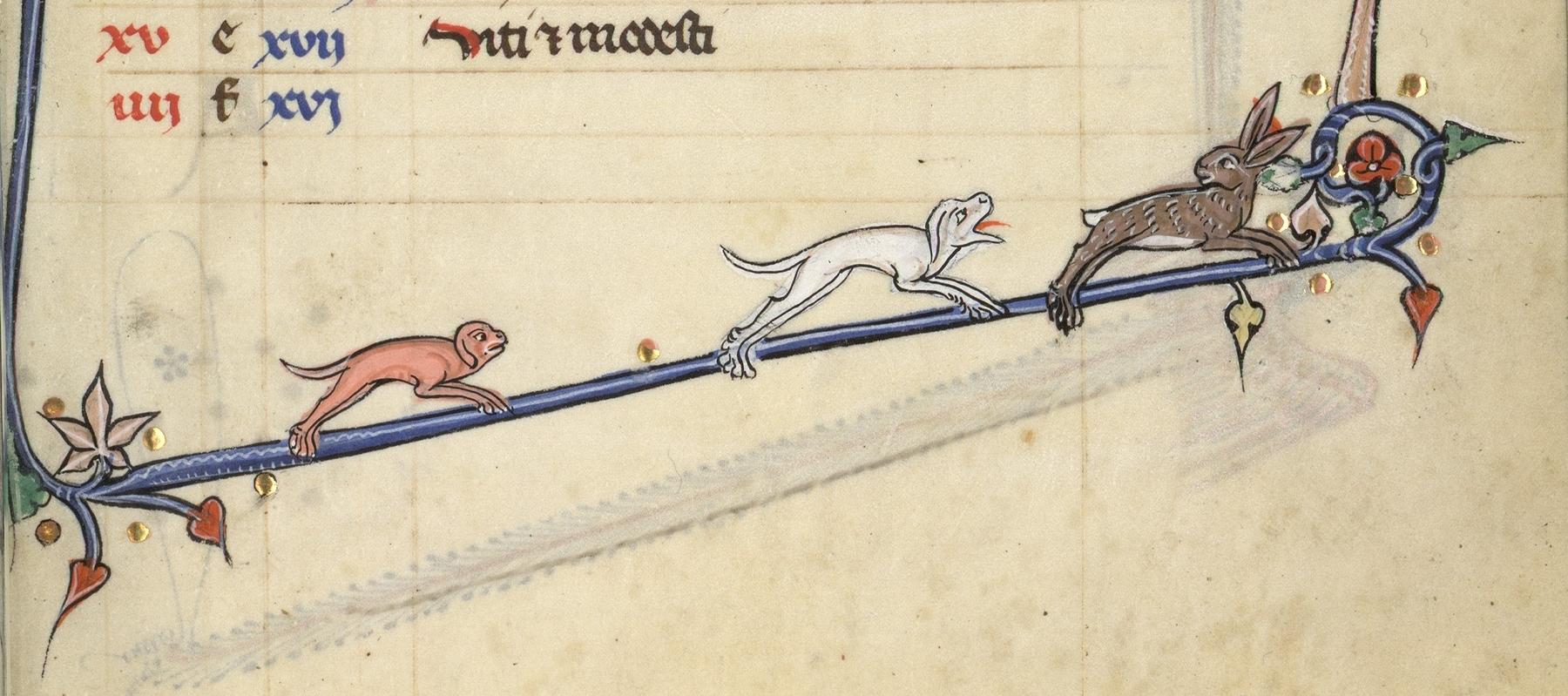 Contenu du Deux chiens chassent un lapin