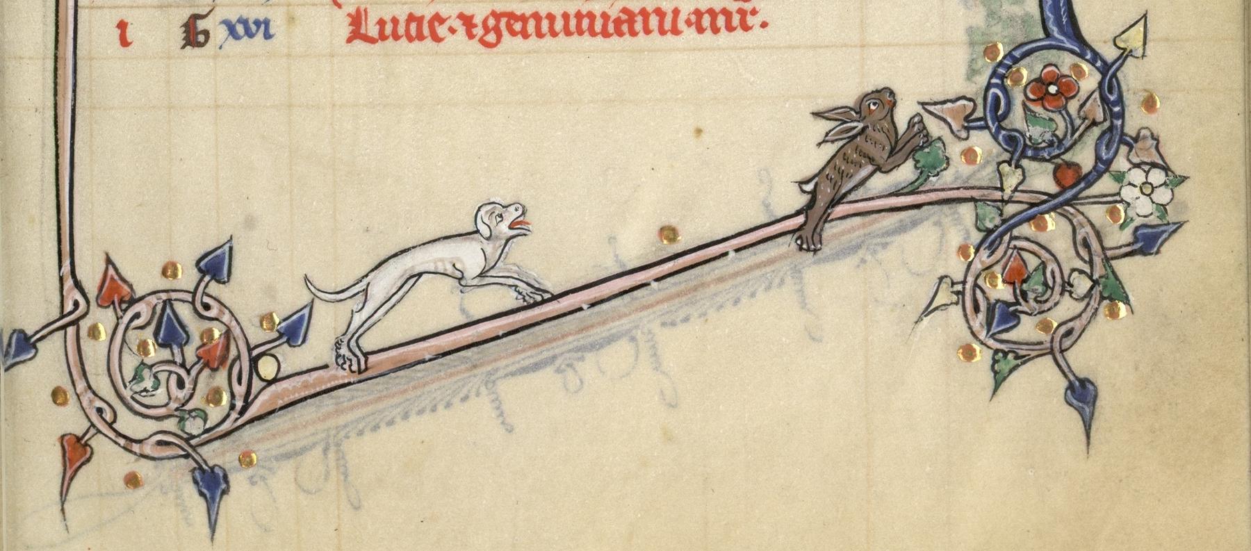 Contenu du Un chien chasse un lapin