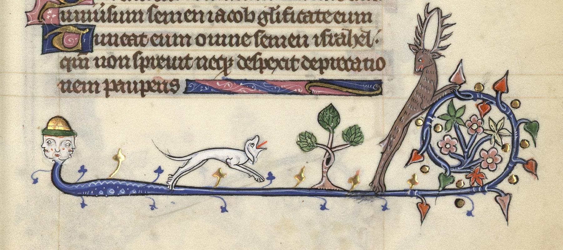 Contenu du Un chien chasse un cerf