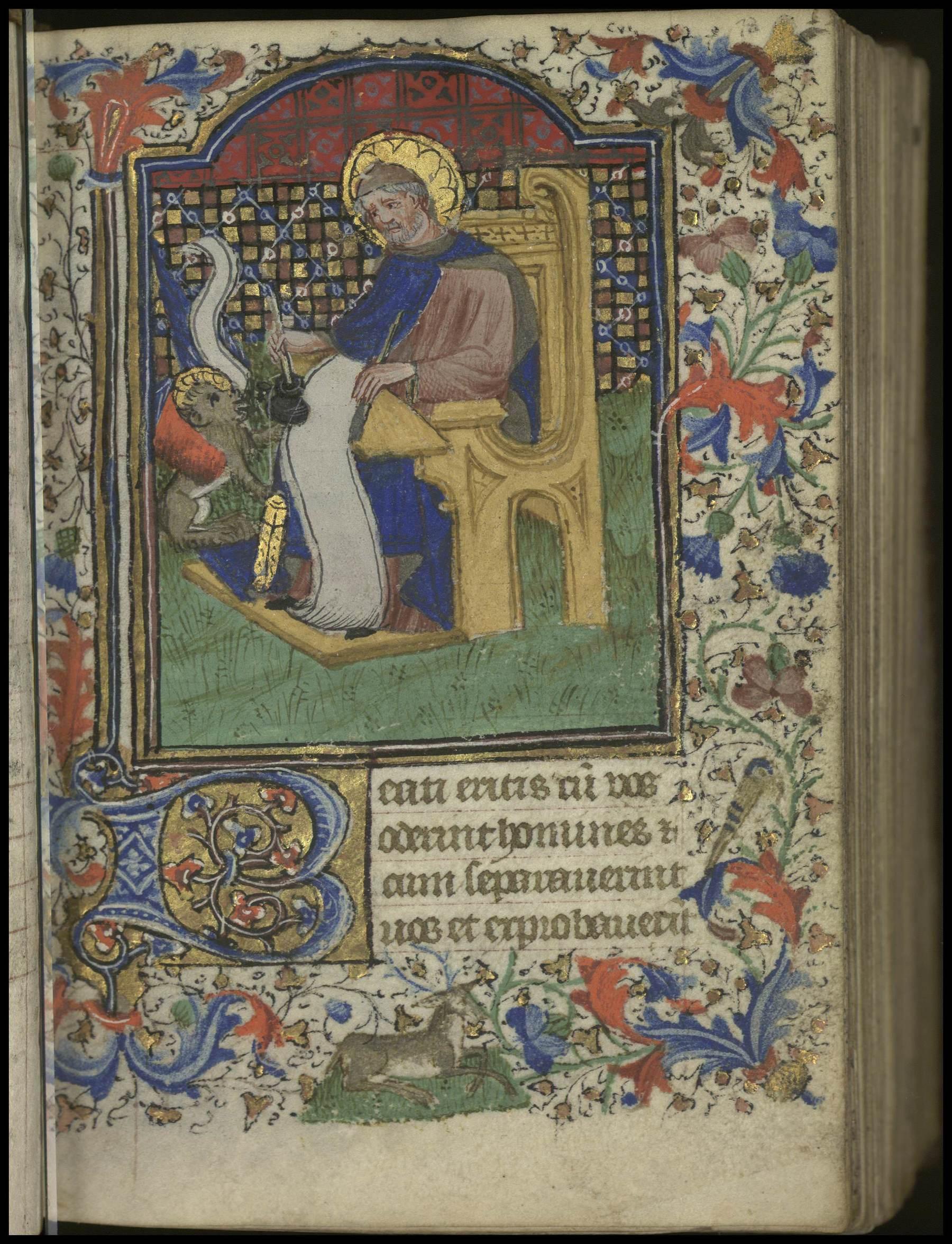 Contenu du [Saint Marc]
