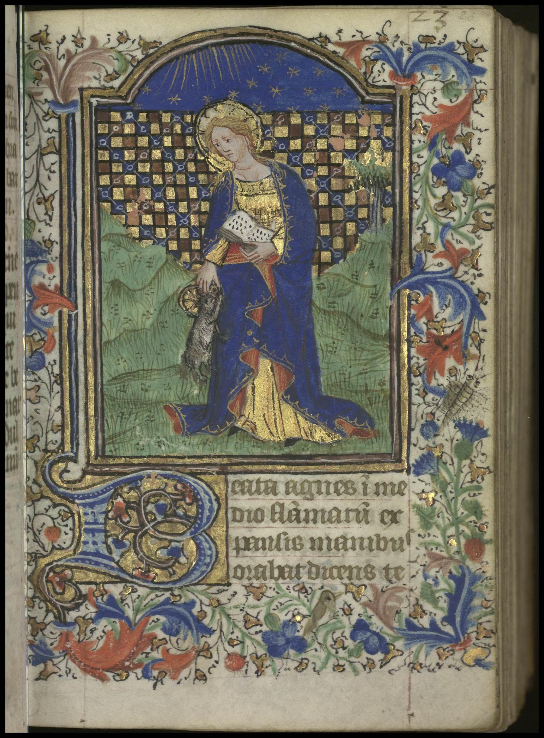 Contenu du [Sainte Agnès]