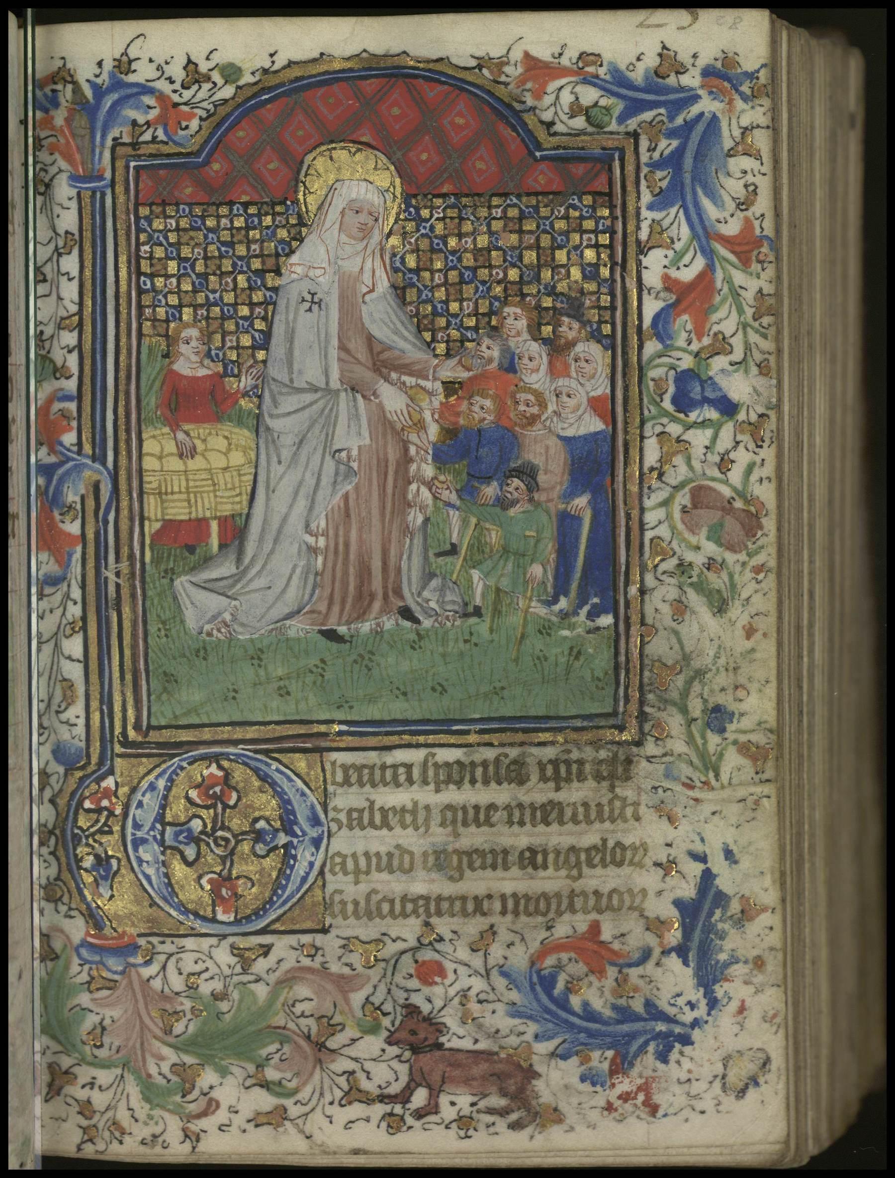 Contenu du [Sainte Elisabeth de Hongrie]