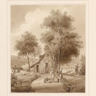 Contenu du Balade au parc du château d'Épinal