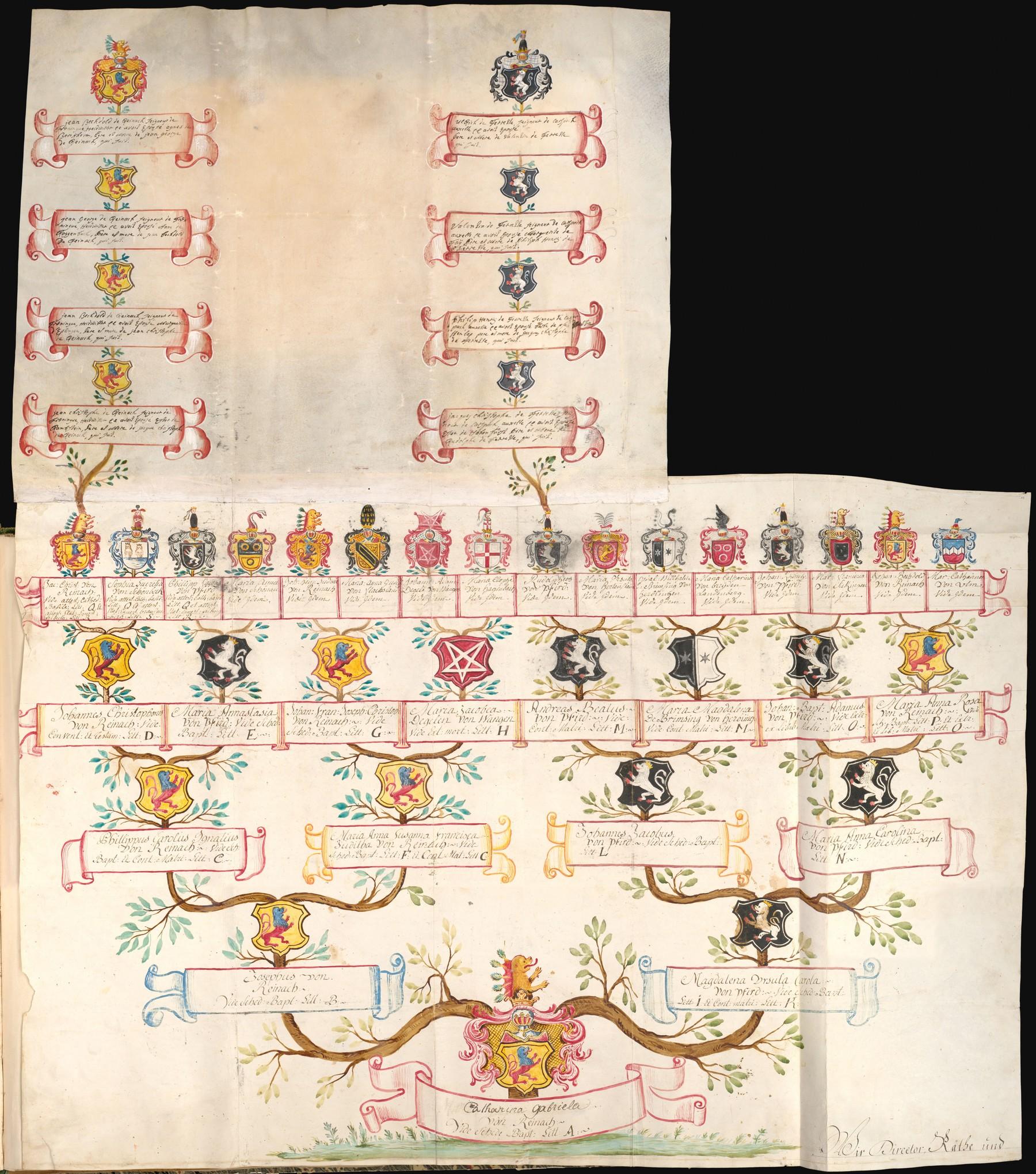Contenu du Arbre généalogique de Catherine Gabrielle de REINACH (1772-1838).