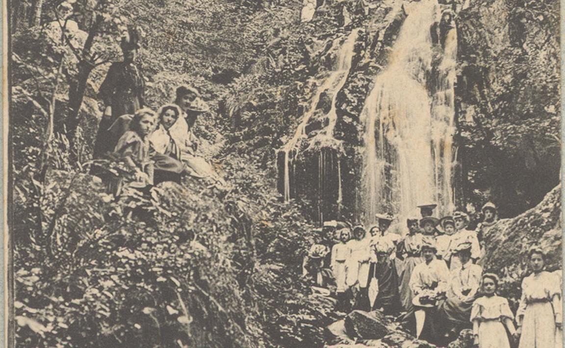 Contenu du Tendon - La Grande cascade