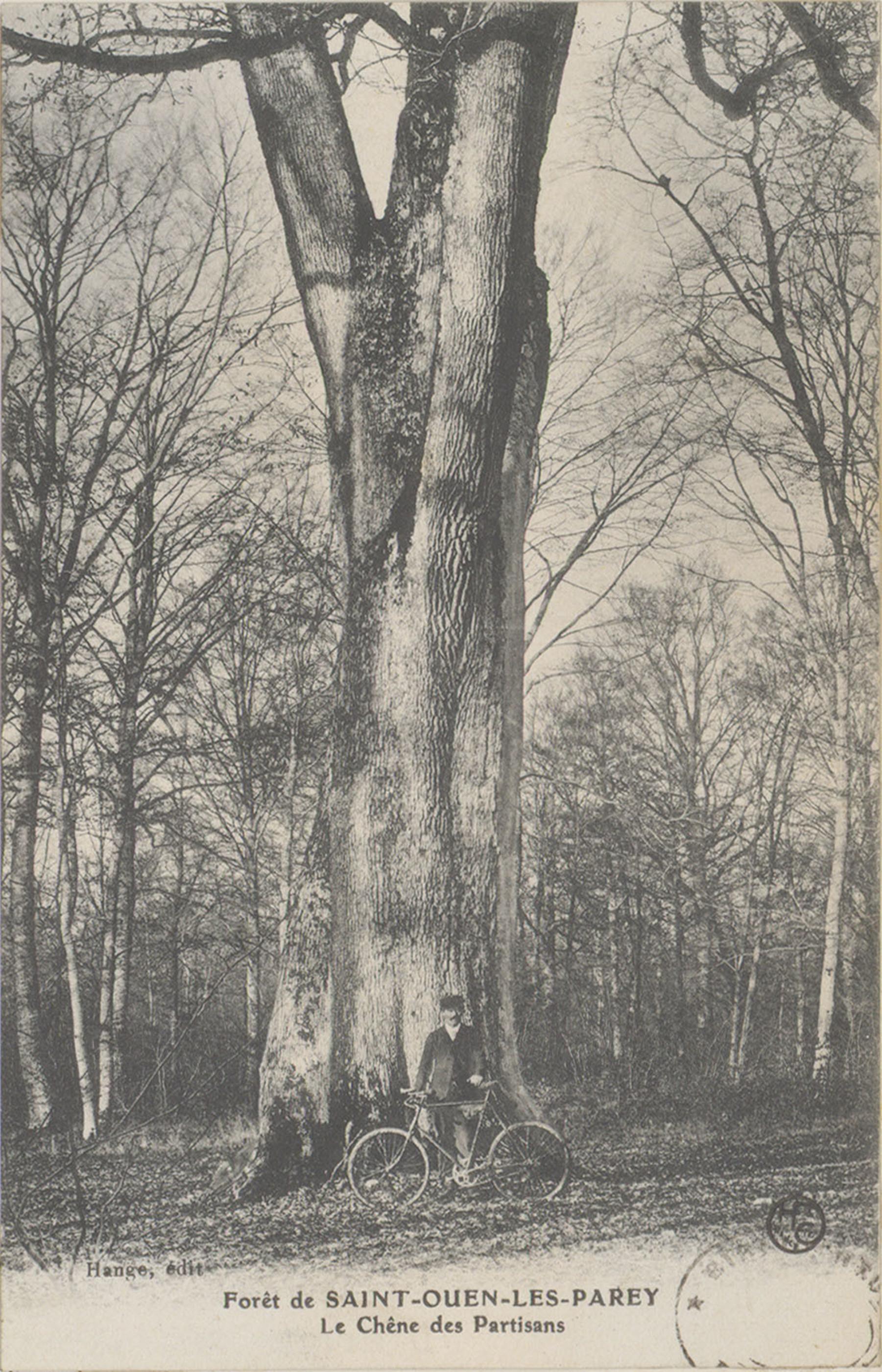 Contenu du Le Chêne des Partisans dans la Forêt de Saint-Ouen-les-Parey