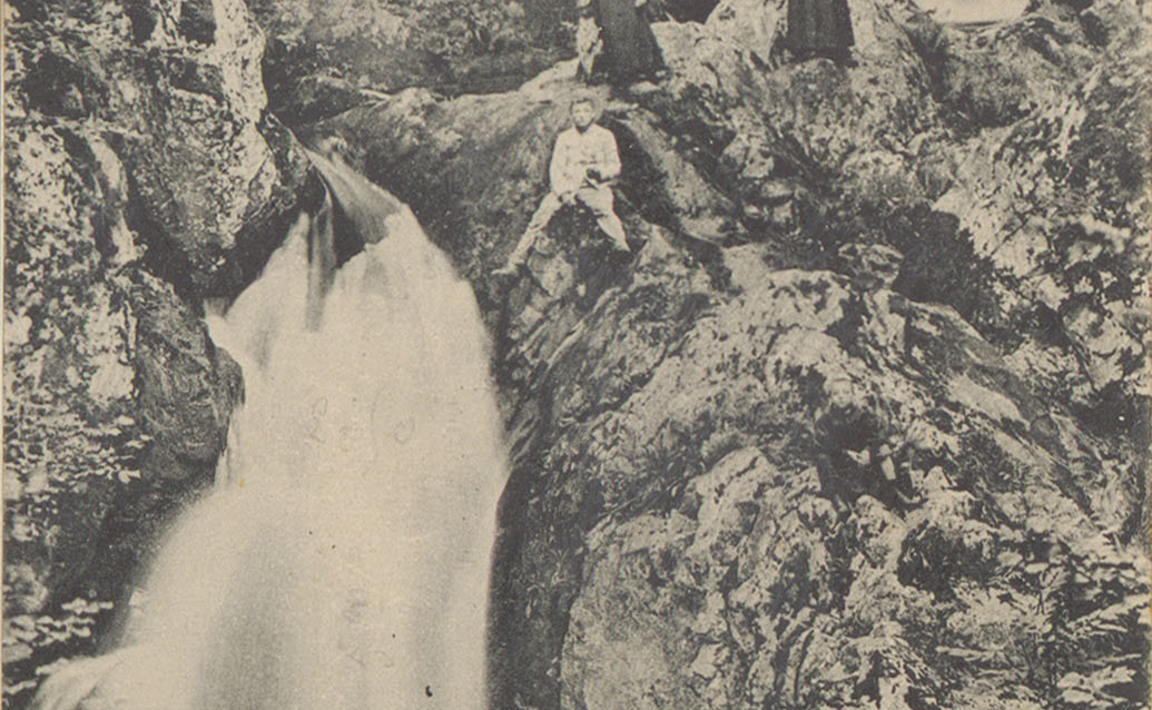 Contenu du Tendon - La Petite Cascade
