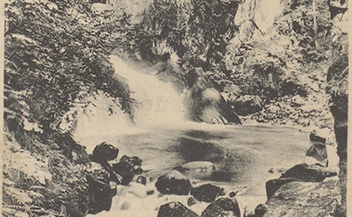 Contenu du Gérardmer - La Cascade du saut des cuves