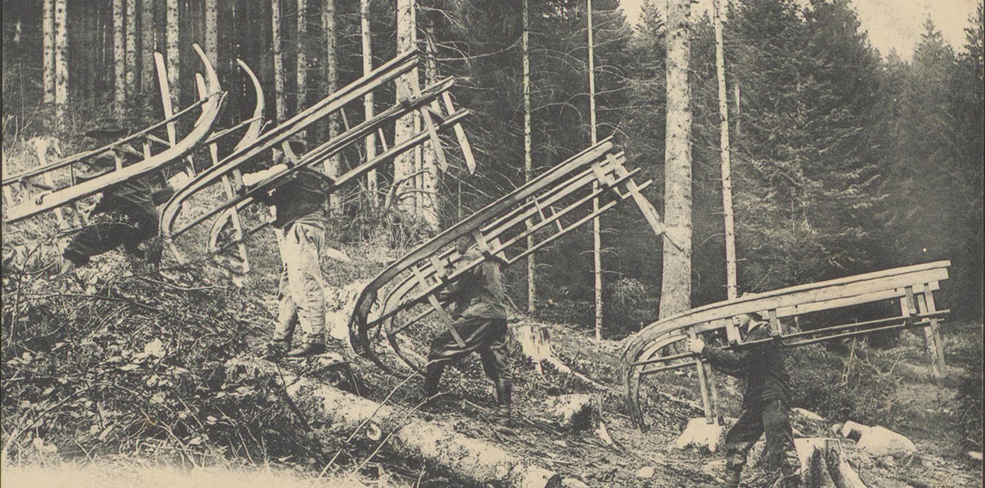 Contenu du Comment toucher du bois en Lorraine ?