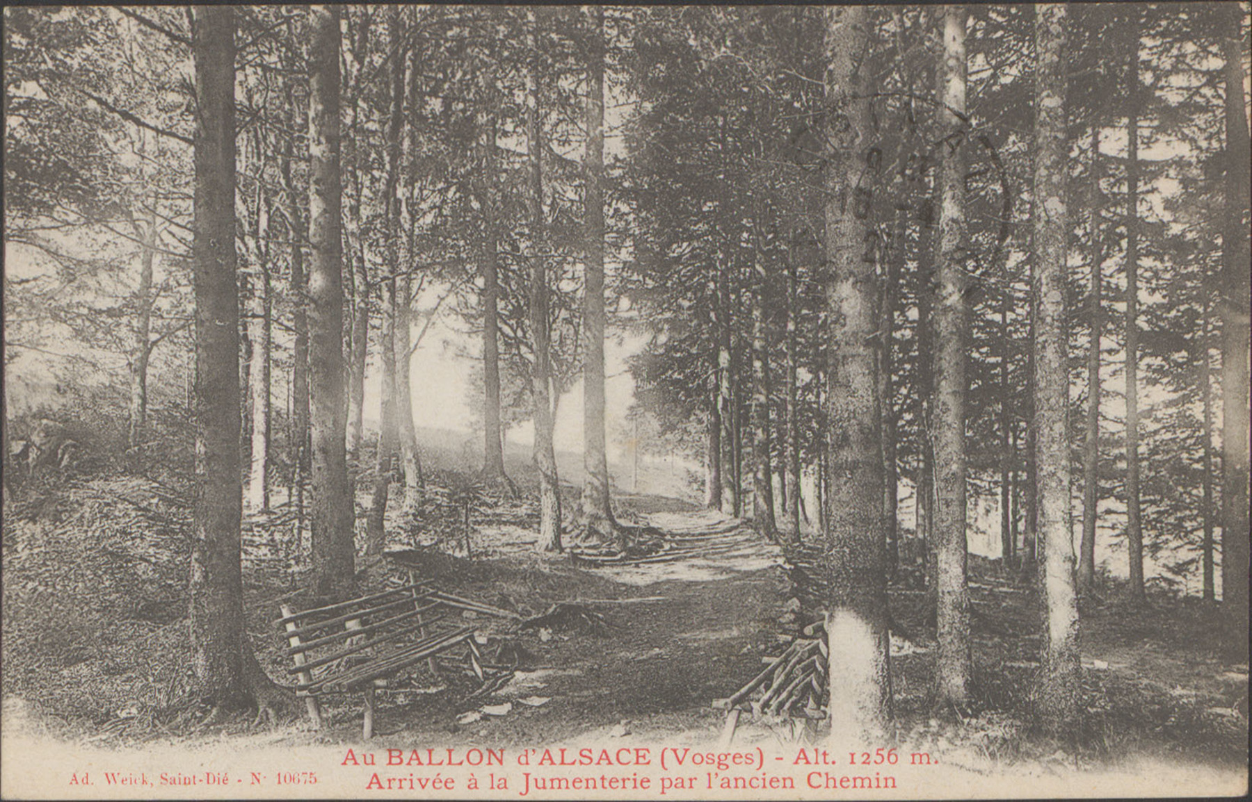 Contenu du Ballon d'Alsace