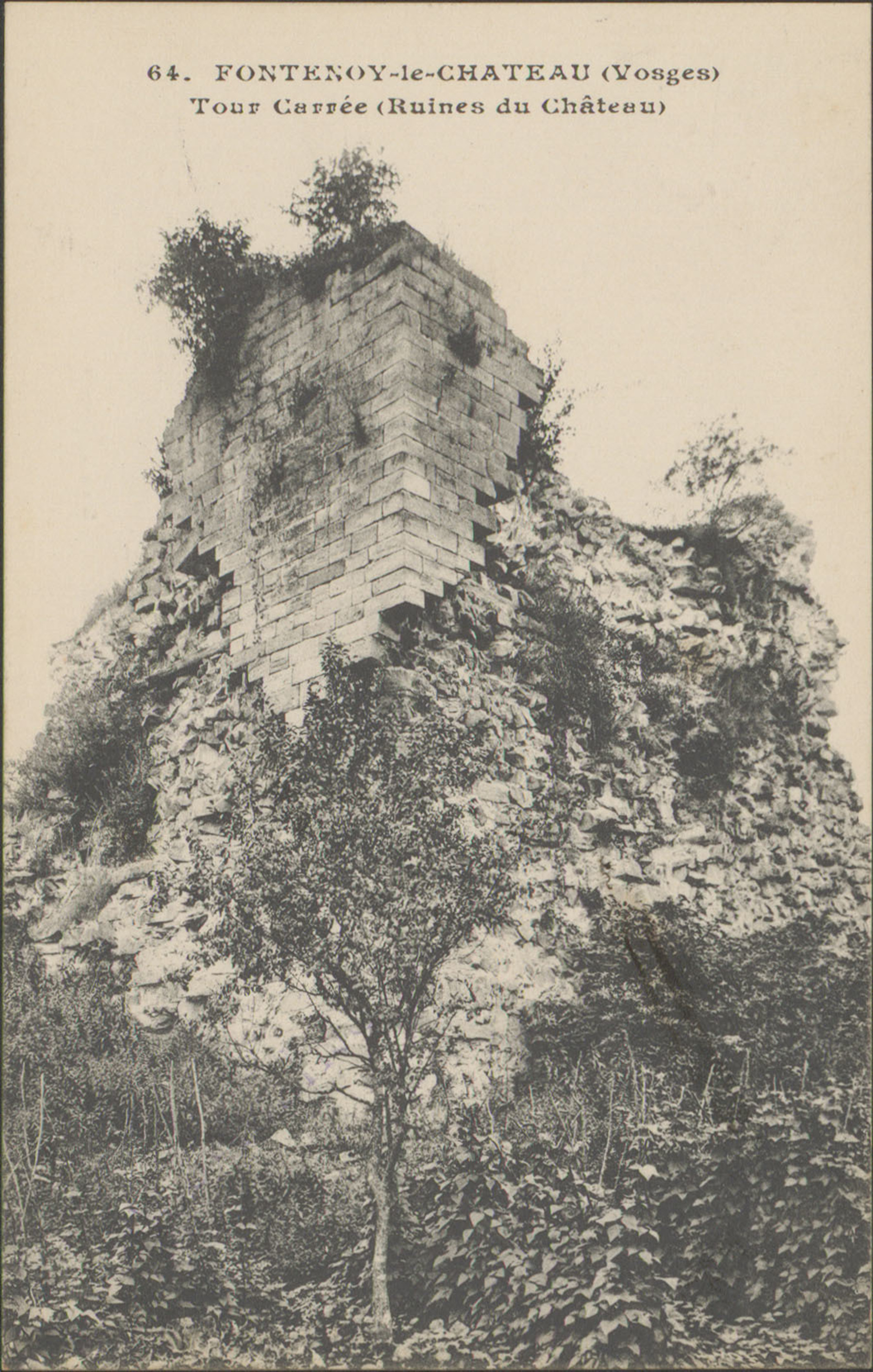Contenu du Fontenoy-le-Château (Vosges), Tour carrée (Ruines du Château)