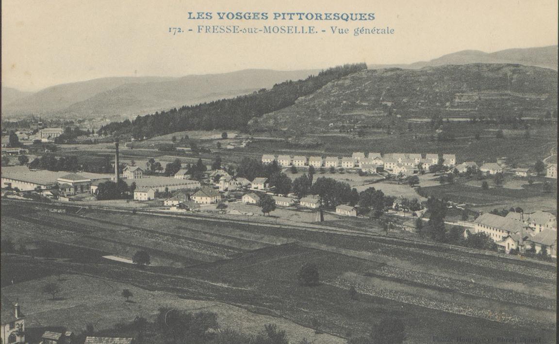 Contenu du Fresse-sur-Moselle (Vosges), Vue générale