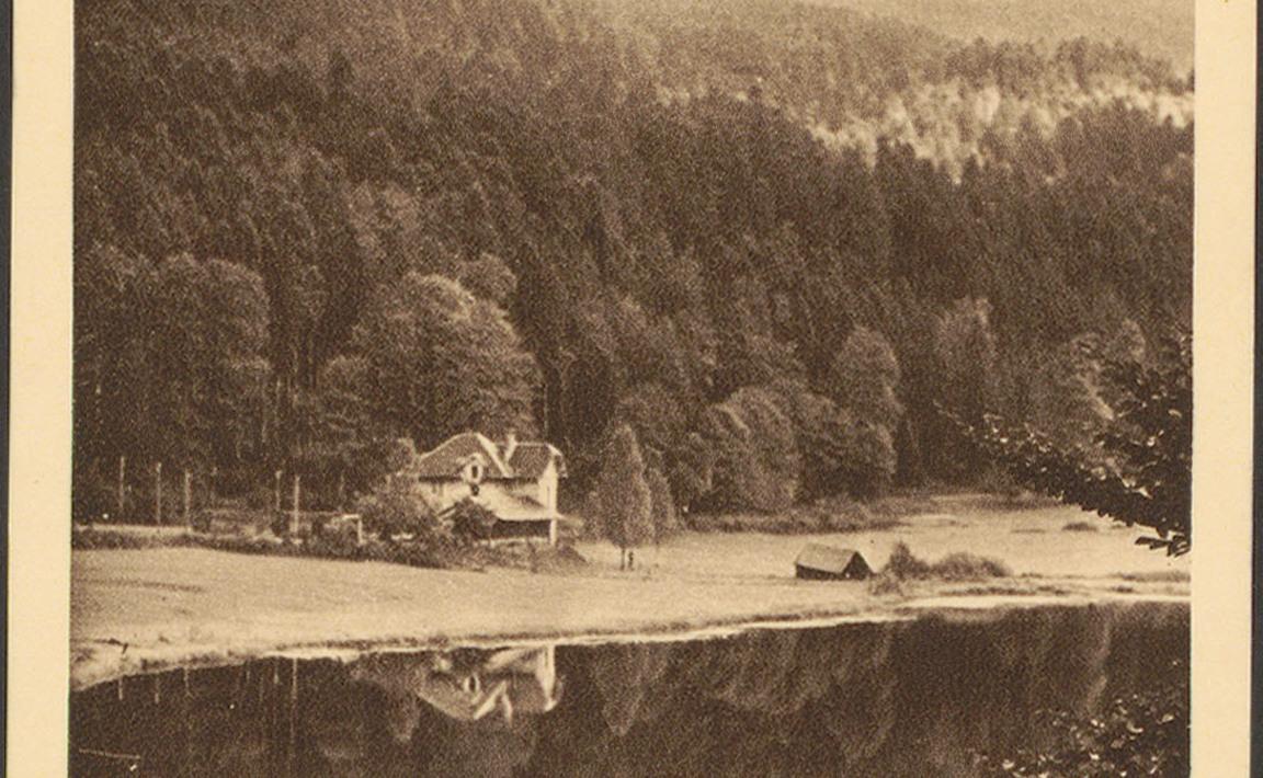 Contenu du Les Fées du Lac de Retournemer, Xonrupt-Longemer