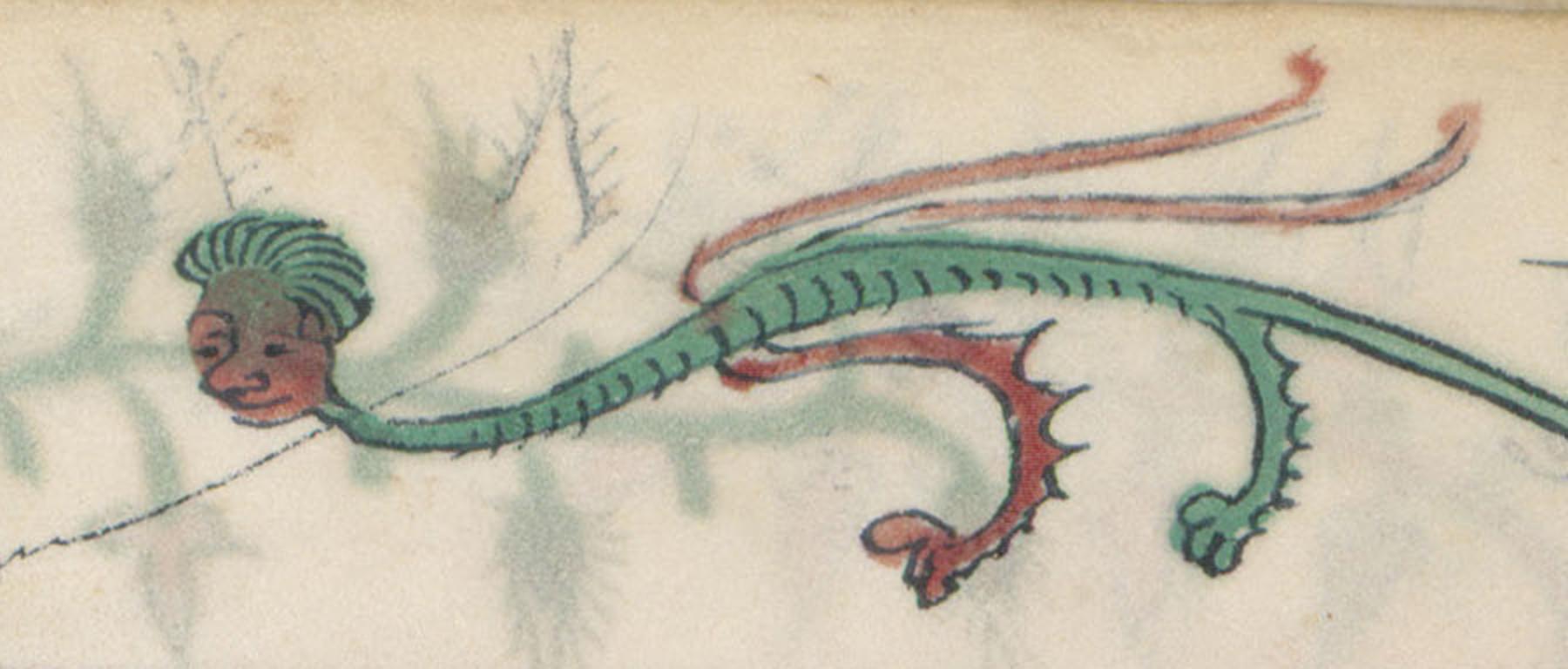 Contenu du Homme dragon
