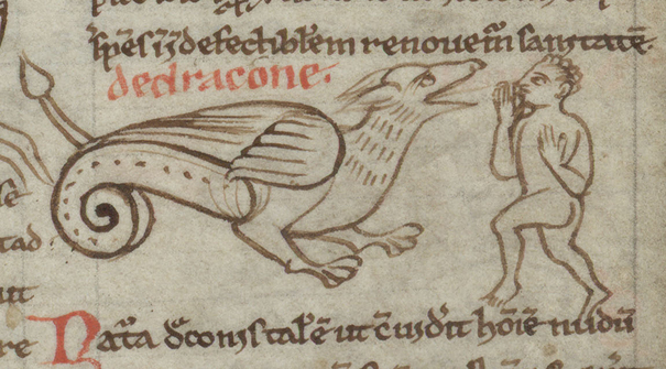 Contenu du Les dragons